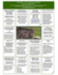 150 Years-page-001.jpg