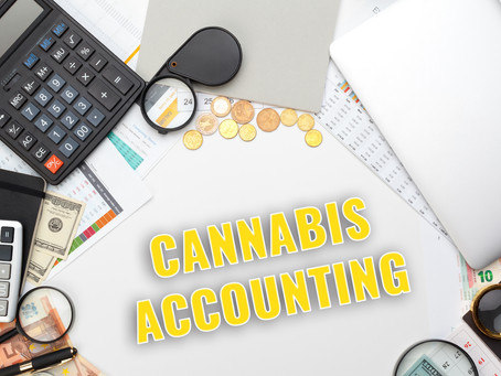 What to Look for When Choosing a Cannabis Accountant