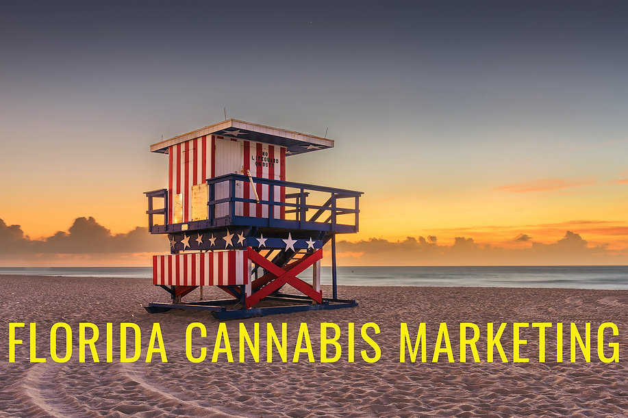 Florida Cannabis Marketing Graphic Design.jpg
