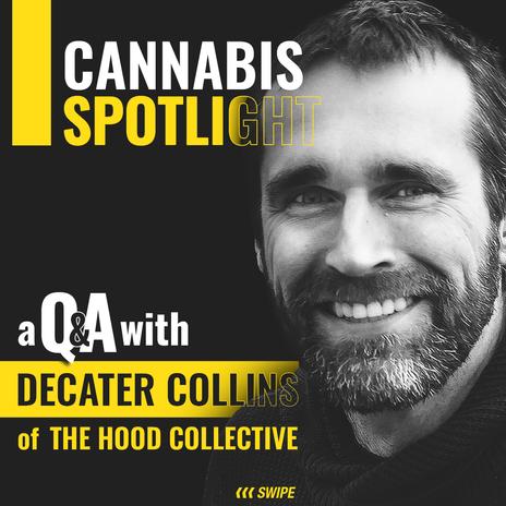 Cannabis Profile