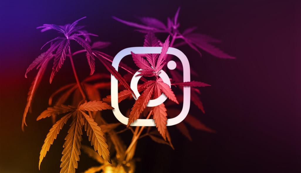 Cannabis Social Media Instagram