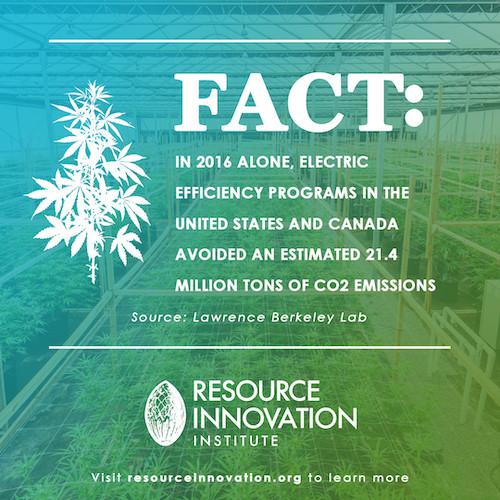 Cannabis Energy Facts For Social