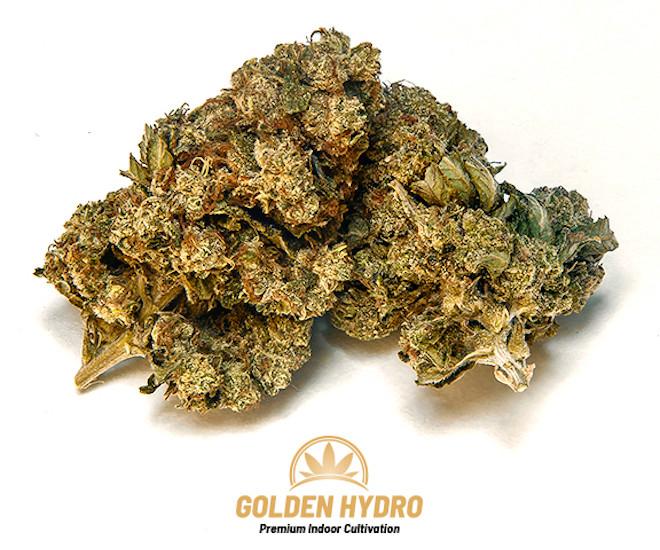Golden Hydro