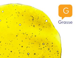 The Grasse Company