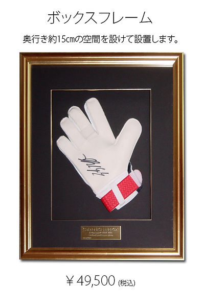glove-2b.jpg