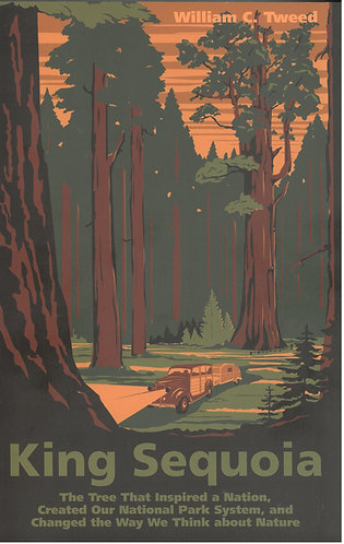 King Sequoia