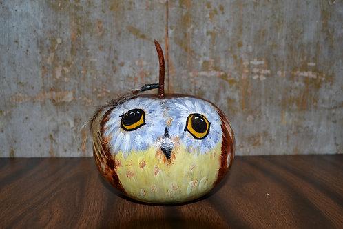 Yosemite Owl Painted Gourd