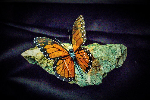 Butterfly Echo Mariposite Medium