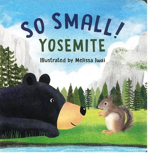 So Small Yosemite