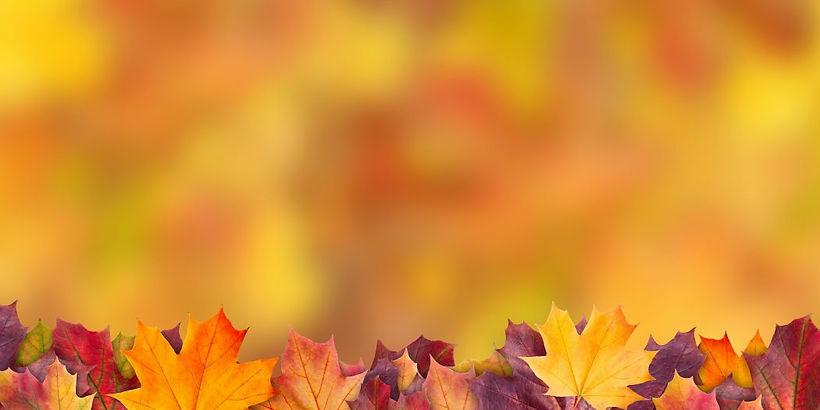 bigstock-Amazing-Colorful-Background-Of-315303505-1050x525.jpg