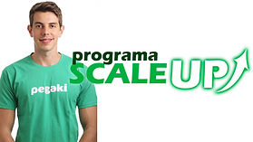 programa scale up.jpg