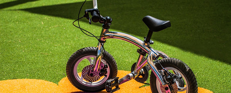balance bike with pedal kit.jpg