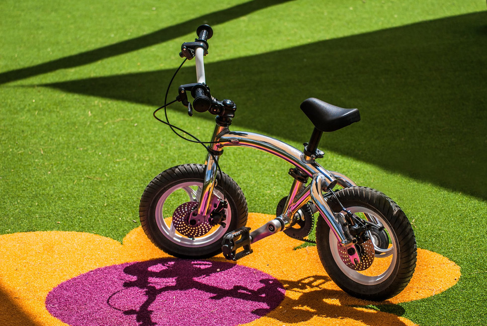 balance bike with pedal kit.jpg