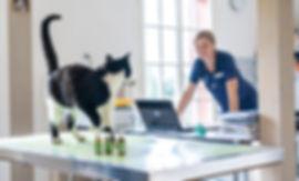Gerzensee Tierarztpraxis 20180817 _DSC23