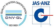 dnv logo.PNG