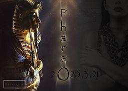 Pharao_Plakat_klein.jpg