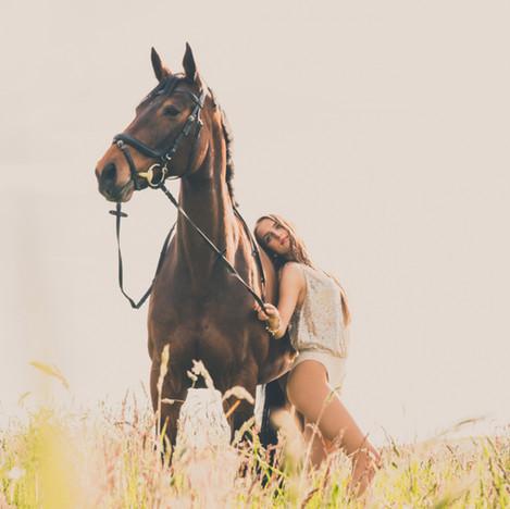 Outdoor Pferd