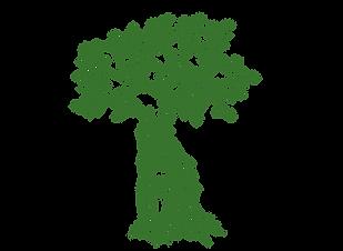 Praxis-Mullahi-LOGO-Baum