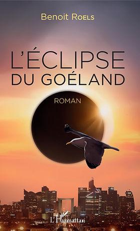 Eclipse_Goeland.jpg