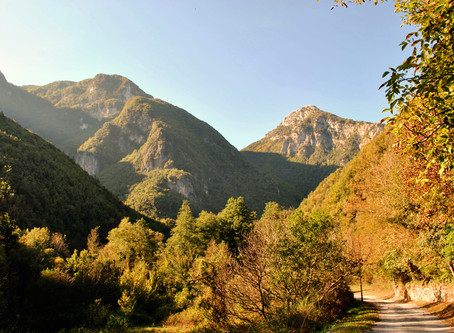 River Valley Argentino – Natural Park      Perfect for trekking