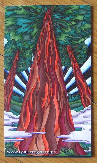 three redwoods magnet