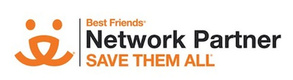 BF Network Partner Logo copy.jpg