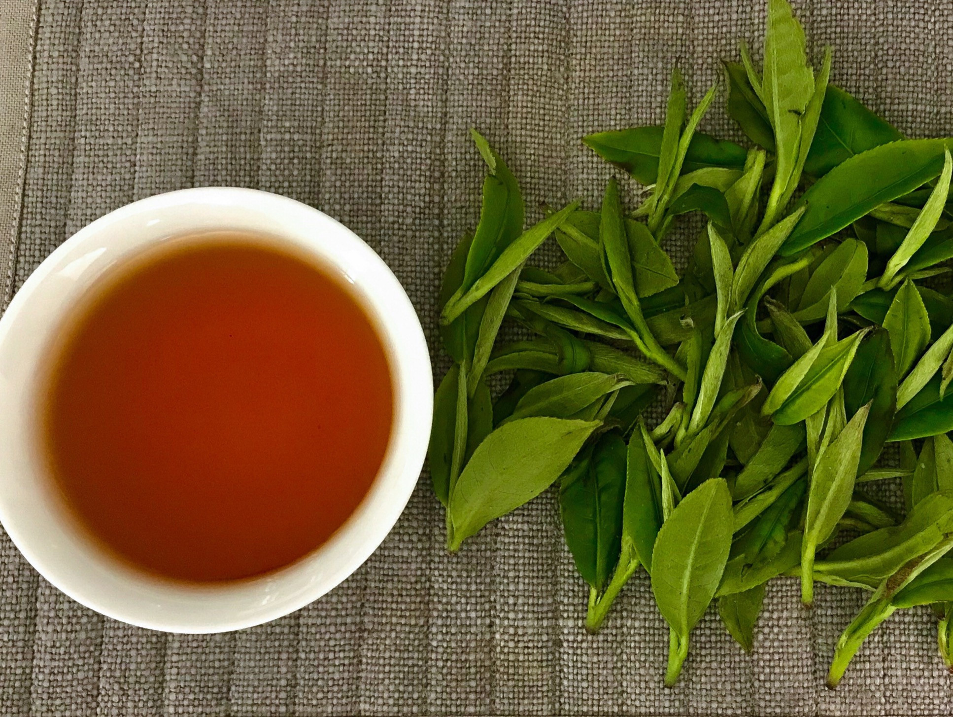 From Garden to Cup; Intro to Tea