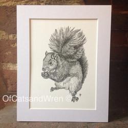 Squirrel - Jennifer Livingston