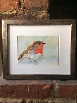 Robin in the Snow - J K Livingston