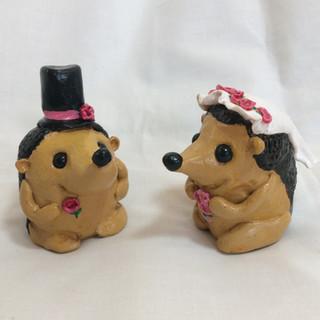 Mr and Mrs Hedgehog