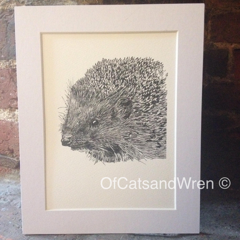 Hedgehog - Jennifer Livingston
