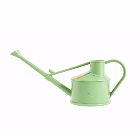 Sage Watering Can