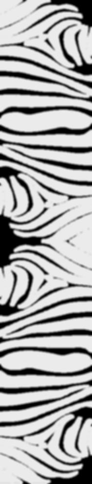 zebra-pattern-long.png