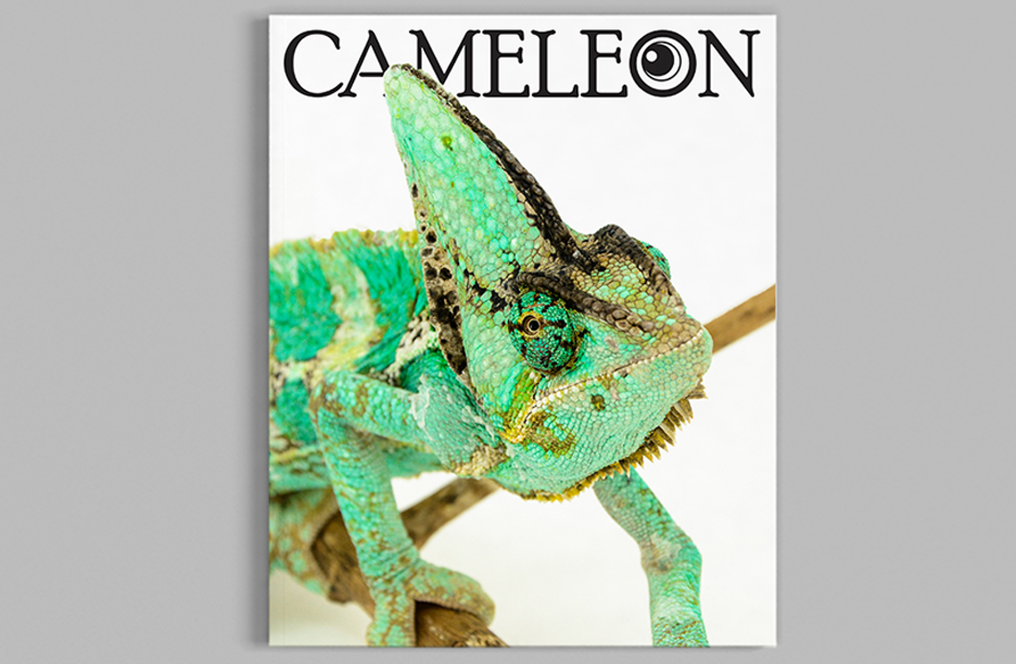 Cameleon 2019_Cover Mockup copy2