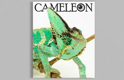 Cameleon 2019_Cover Mockup copy2