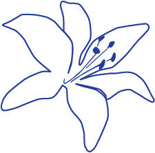 St Catherine of Siena_Lily_Blue.jpg
