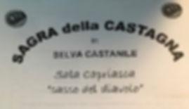 sagra_castagna.jpg