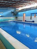 Sue's Swim School Newhall Primary School.