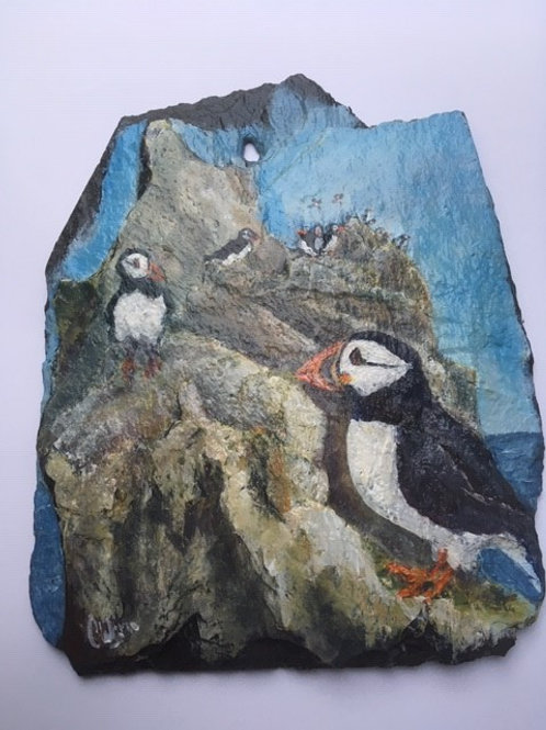 The Puffinry