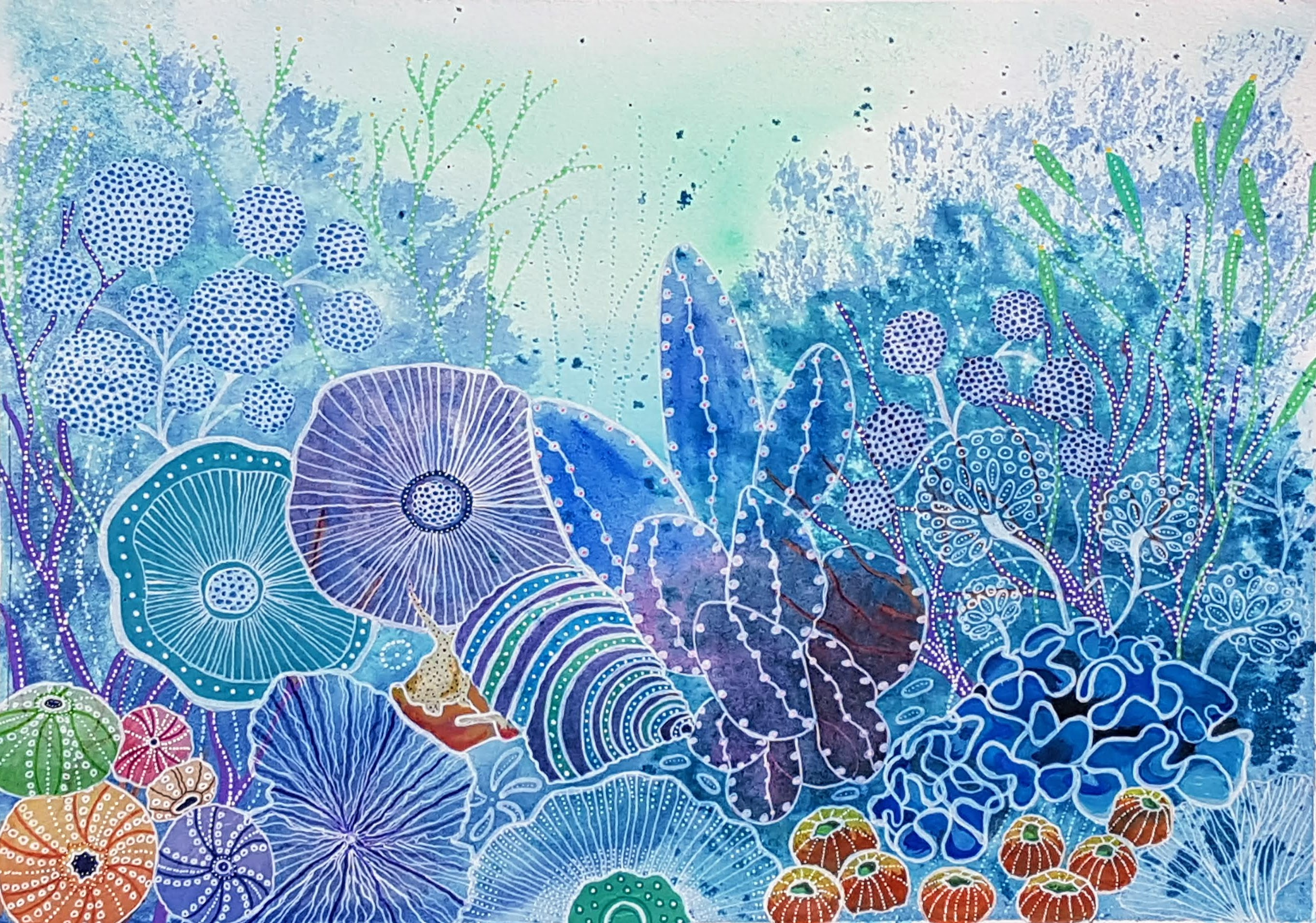 ST Coral Reef 1
