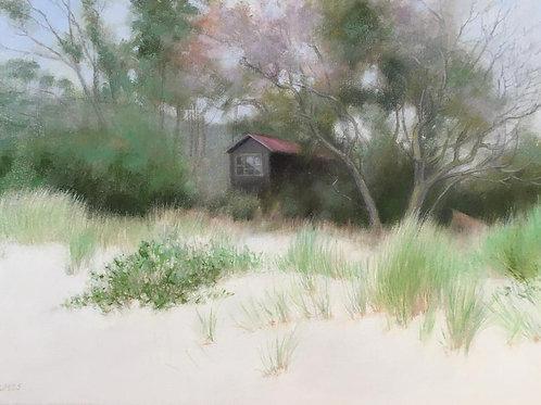 Tasmanian Beach Hut