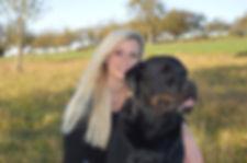 Ernährungsberatung Hund Hundsgesund