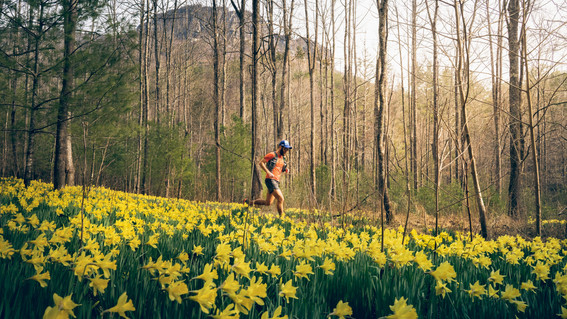 trail-running-flowers-linville-gorge-nc-