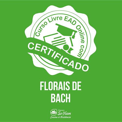 Florais de Bach Curso EAD Online