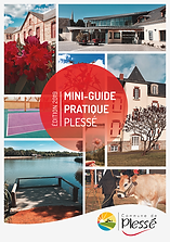 Mini-Guide-2019-couverture.png