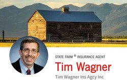Tim Wagner Ins