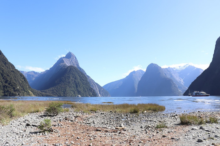 My Top 5 Things to Do in Fiordland