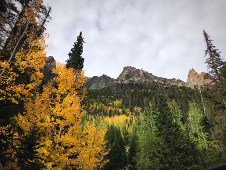 where to see leaves change in Colorado