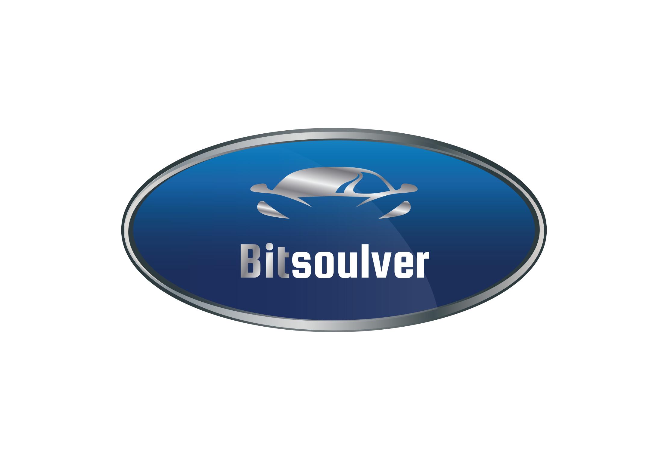 לוגו bitsoulver