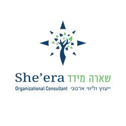 לוגו יעוץ ארגוני